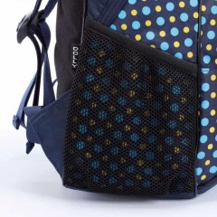 Школьный рюкзак Dolly 508