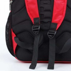 Школьный рюкзак Dolly 521