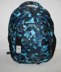 Школьный рюкзак Dolly 528