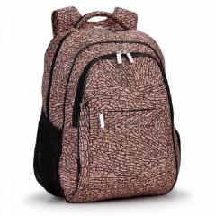 Школьный рюкзак Dolly 539