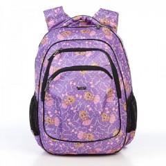 Школьный рюкзак Dolly 541