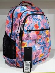 Школьный рюкзак Dolly 543